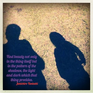 ... shadows, the light and dark which that thing provides.