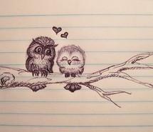 couple-cute-heart-love-owl-185875.jpg