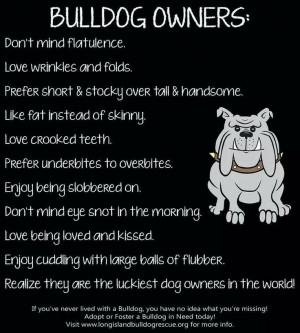 Funny English Bulldog Pictures With Sayings Bulldog owner :-)