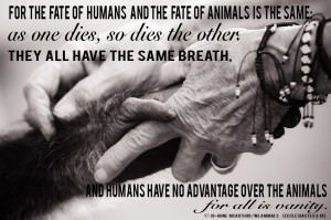 The Bible and the Animal Rights Movement