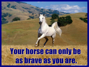 Funny Horse Sayings Your horse can only be as