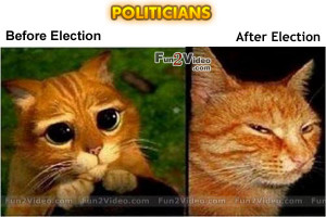 Politician Before After Election