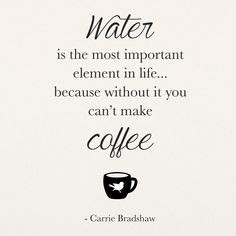 Quote: Water is the most important element in life...because without ...