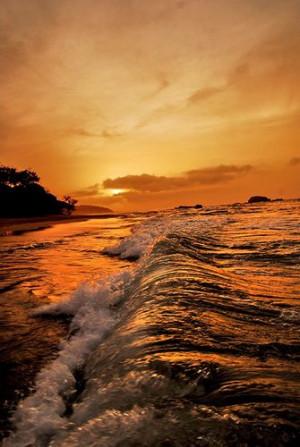 Tags: #photooceanriverpool