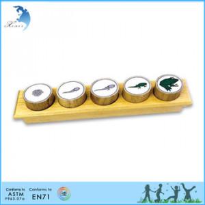 Nursery Wooden Educational Montessori Teaching Material EN71 Toddler ...