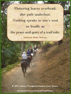 quotes, horses, trail riding, nature © 2013 Andrea Vinciguerra ...