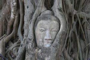 who was siddhartha gautama buddha