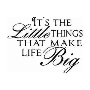 It's the Little Things That Make Life Big Vinyl Wall Quote