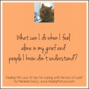 ... coping in healing pet loss 10 tips for coping with the loss of a pet