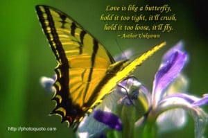 Love is like a butterfly, hold it too tight, it'll crush, hold it too ...