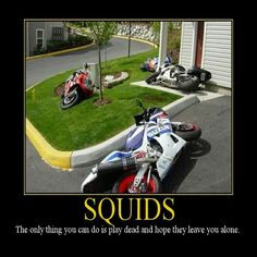Quotes - Motorcycle / Sportbike / Rider