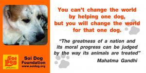 ... dog poem adopt shelter dog quotes adopt a dog quotes adopt shelter