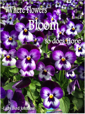 ... Quotes, Flower Power Quotes, Inspirational Garden Quotes, Plants