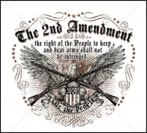 2nd Amendment 2nd amendment ls t-shirt