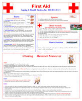 First Aid Posters Health And Safety At Work Picture