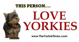 Loves Yorkies