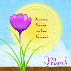 more spring awakening pictures diaries spring thoughts spring spring ...