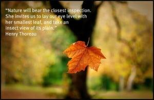 Nature Quotes Thoreau
