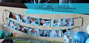 Monthly Milestone Birthday Banner1Stbirthday, Birthday Banners, Bday ...