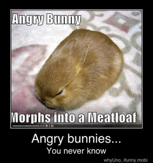 Angry bunny meatloaf?