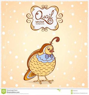 Illustration Funny Character Bird Quail