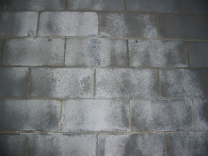 Efflorescence On Concrete Block Walls