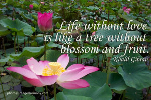 Life without love...Khalil Gibran