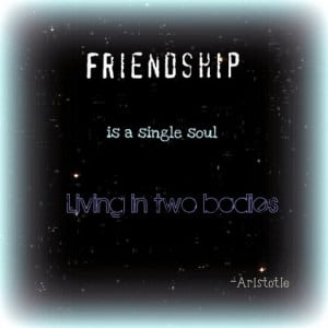 Friendship Quotes Wall Decals for Nursery Bedroom Decoration