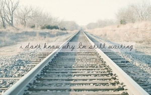 quote, quotes, road, train, true, typography, words