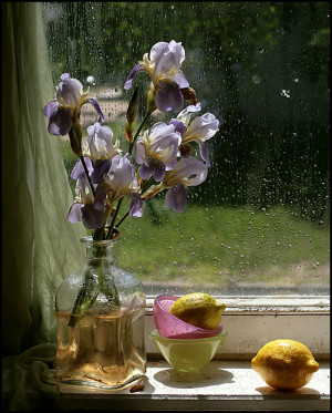 To analyze the charms of flowers is like dissecting music;