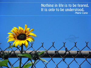 ... in life is to be feared it is only to be understood marie curie