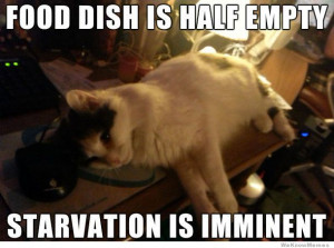 Food dish is half empty starvation is imminent