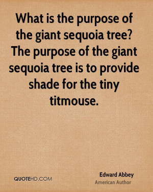 What is the purpose of the giant sequoia tree? The purpose of the ...