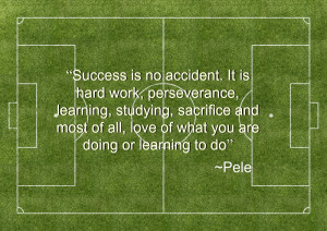 ... sacrifice and most of all, love of what you are doing or learning to