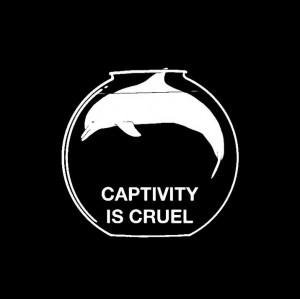 ... , Marines Parks, Animal Captive, Sea World, Seaworld, Cruelty Free