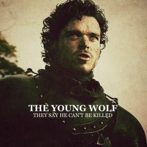 Robb Stark - game-of-thrones Fan Art