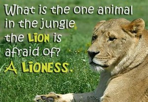 ... of lioness sitting on grass with quotation about lion being afraid