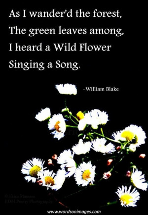 Inspirational quotes and poems