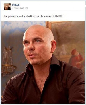 Singer pitbull man sayings quotes and life happiness