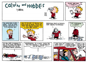 Calvin and Hobbes Quotes and Best Strips