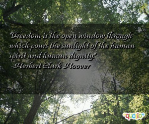 Freedom is the open window through which pours the sunlight of the ...