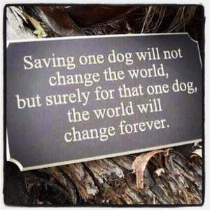 Animal Rescue Quotes