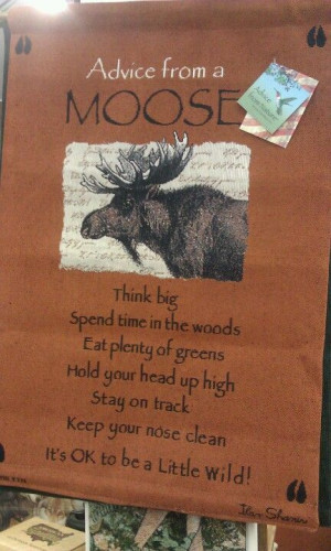 Moose philosophy - this would be good hanging where you can see it ...
