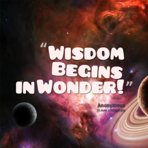 Quotes Picture: wisdom begins in wonder!