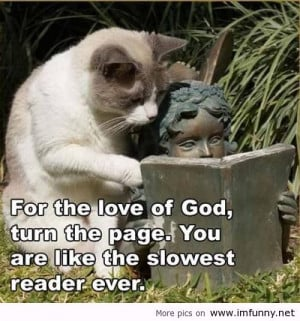 Funny animals with funny sayings .funny animals with funny sayings ...