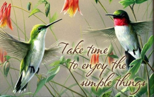 Hummingbirds quote