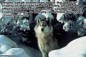 Animal Quotes, Part 4