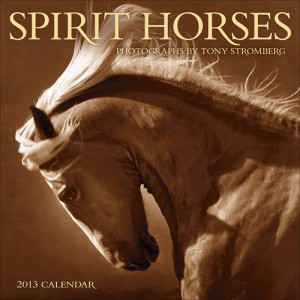 Home > Obsolete >Spirit Horses 2013 Wall Calendar
