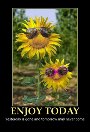 enjoy today quote funny sun flowers