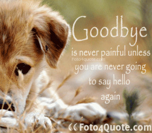 sad goodbye quotes - Goodbye is never painful unless you never going ...
